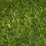 Artificial Grass India
